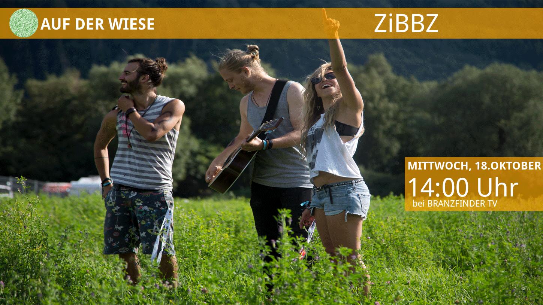 ADW ZiBBZ Promo